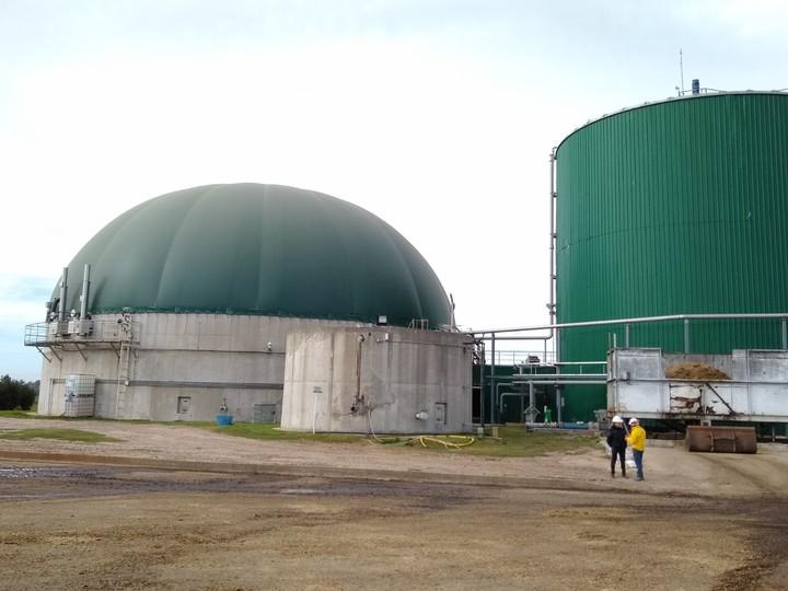 biogas-biomasa-cordoba