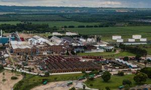 bioetanol ley de biocombustibles