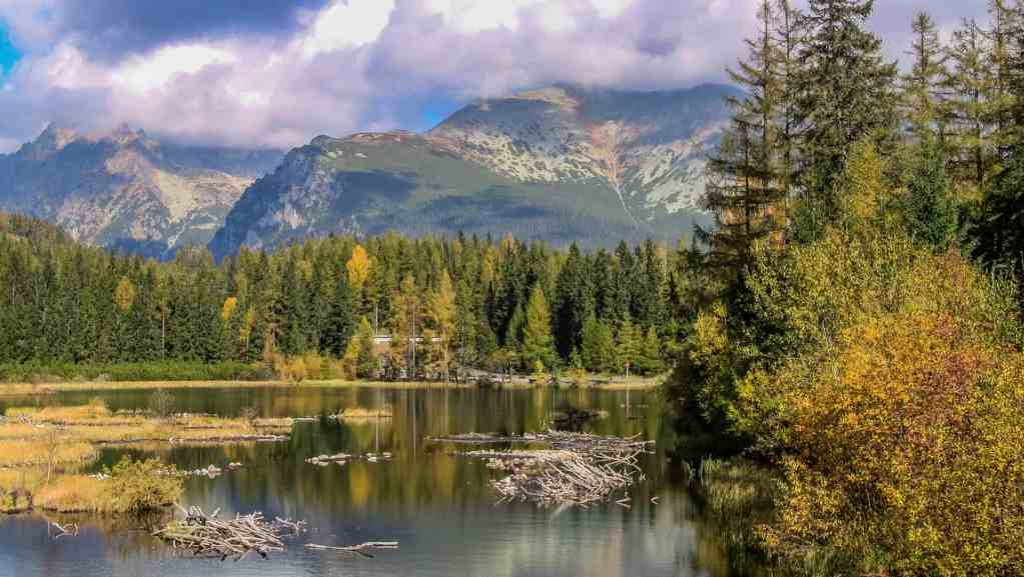 EWS - Tatra National Park Strbske_Pleso -01088_.jpg