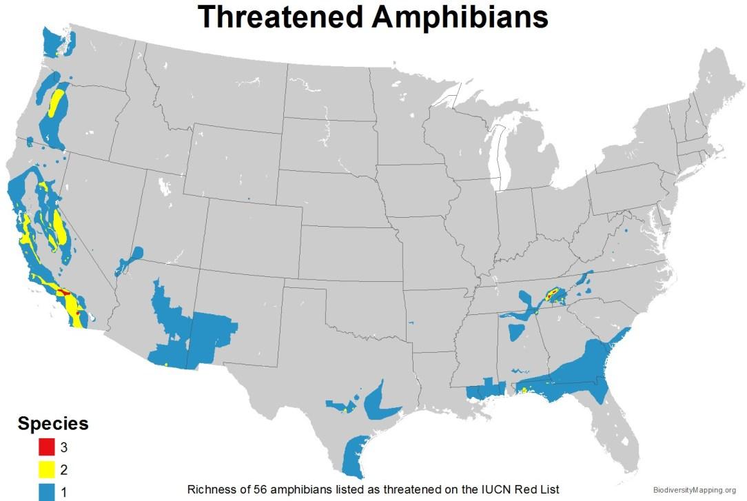 amphibians_usa_threatened_large