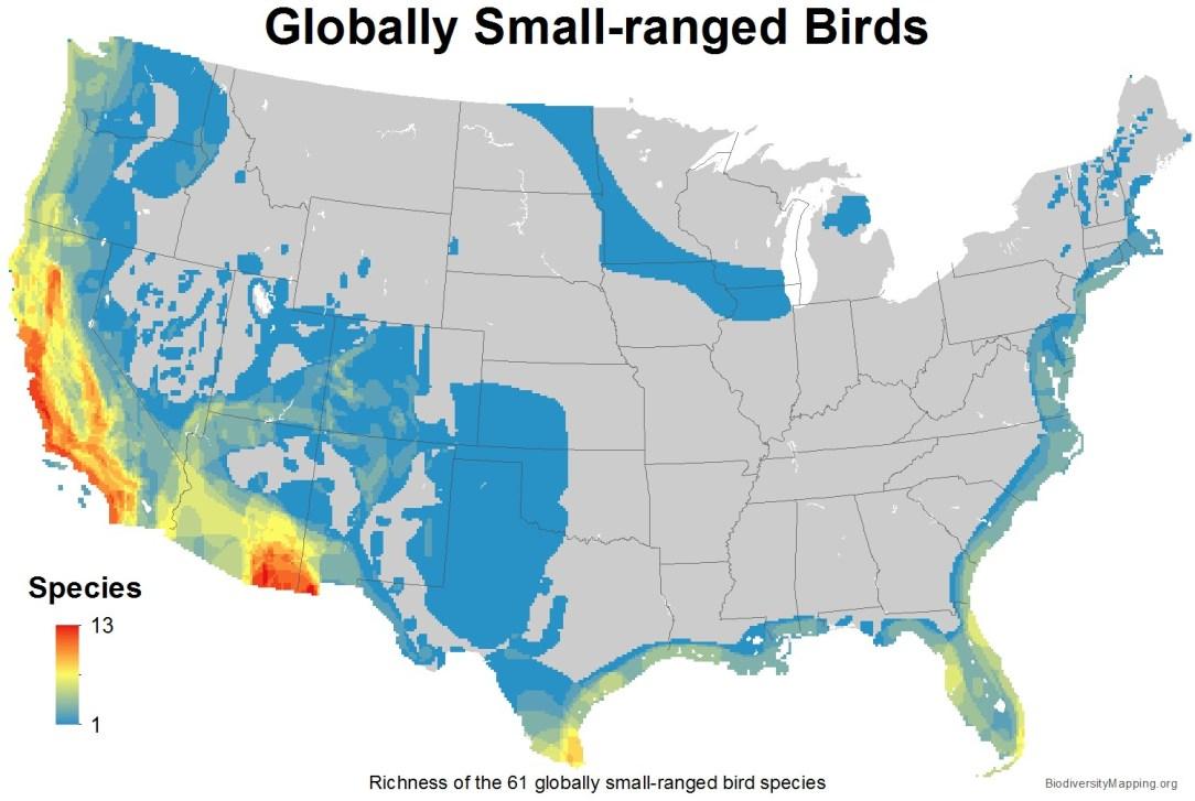 birds_usa_globally_small_large