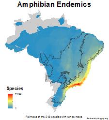 brazil_amphibians_endemics_thumb