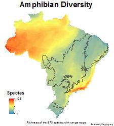 brazil_amphibians_total_richness_thumb