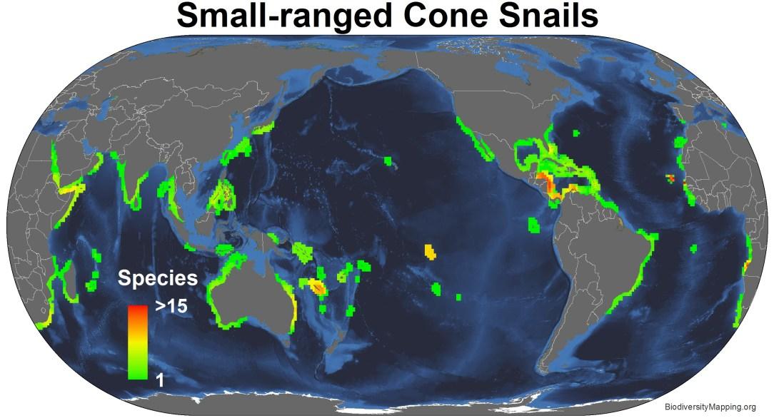 conus_small_ranged