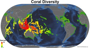 corals_all_spp