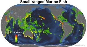 marine_fish_small_ranged