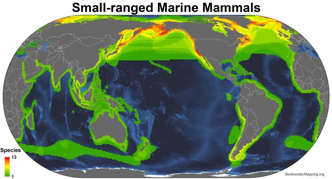 marine_mammals_small_ranged