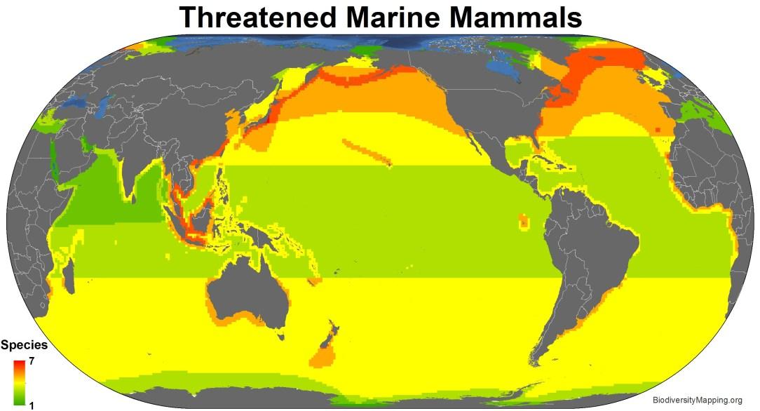 marine_mammals_threatened