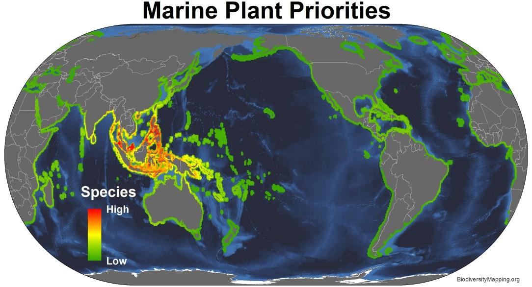 marine_plants_priorities