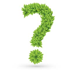 question mark graphic comprised of green leafs
