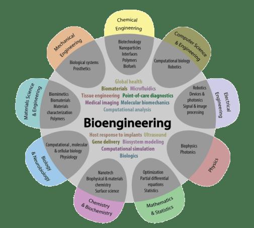 Image result for bioengineering