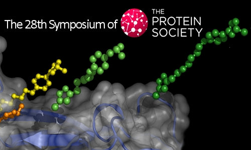 The 28th Symposium of The Protein Society