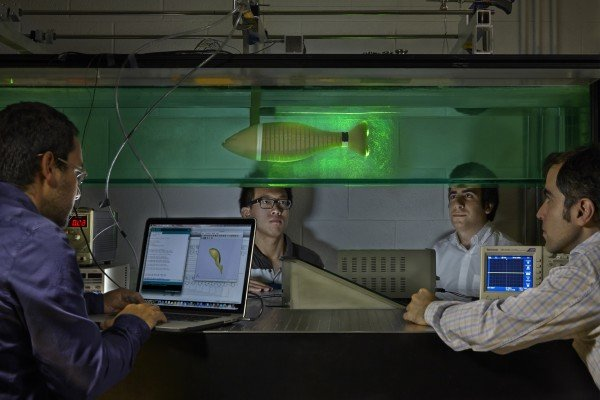 Oscar M. Curet, Ph.D., in FAU's Department of Ocean and Mechanical Engineering (far right), has been observing how animals move to identify the differences between engineering systems and what occurs in nature. His team has a prototype under development, which was inspired by the Knife fish. Photo Credit: Florida Atlantic University