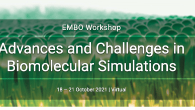 EMBO Workshop is organising the Advances and Challenges in Biomolecular Simulations conference