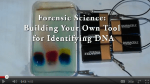 summerfellows-video-forensics