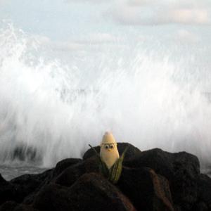 Frank-back-against-ocean300