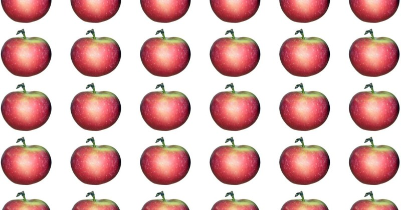 Is it OK to eat Cloned Fruit? - Biology Fortified Inc