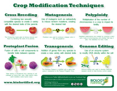 Image result for crop modification techniques