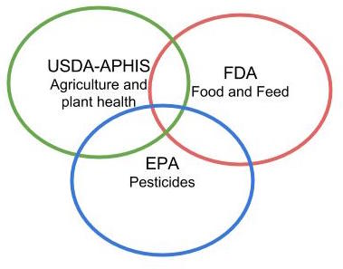 Generalized visual representation of the Coordinated Framework for Regulation of Biotechnology.