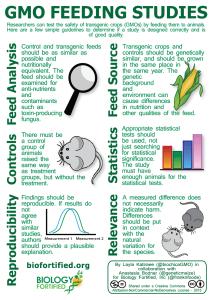 Animal Feeding Study - PNG