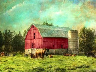 Little red barn. Photo of Woodchuck Farm by William Garrett, enhanced by Dianne Lacourciere using textures by Distressed Jewel.