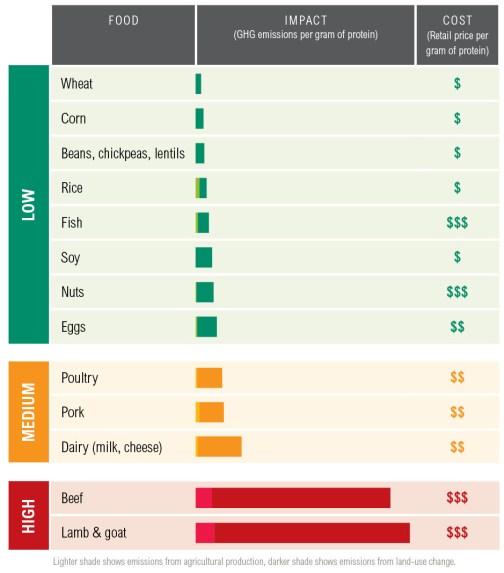 protein scorecard
