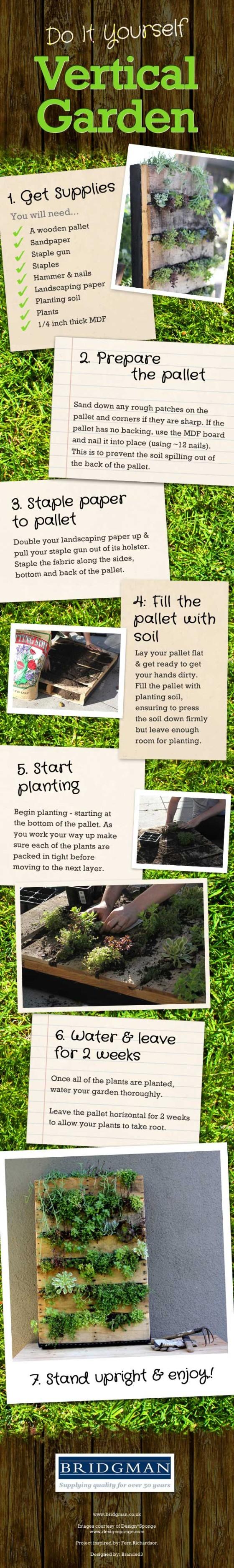 DIY-Vertical-Garden-Wall Infographic