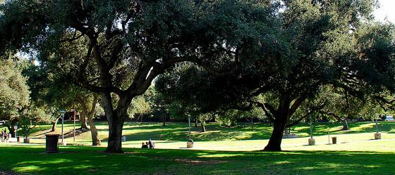 Garfield Park South Pasadena