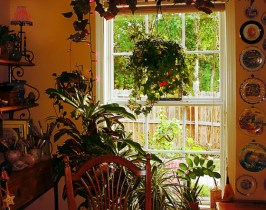 Combating Indoor Air Pollution in Summer