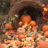 3 Simple Ways to Green Your Thanksgiving