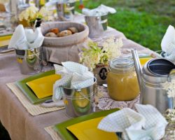 How to Create a Biofriendly Picnic or Outdoor Party
