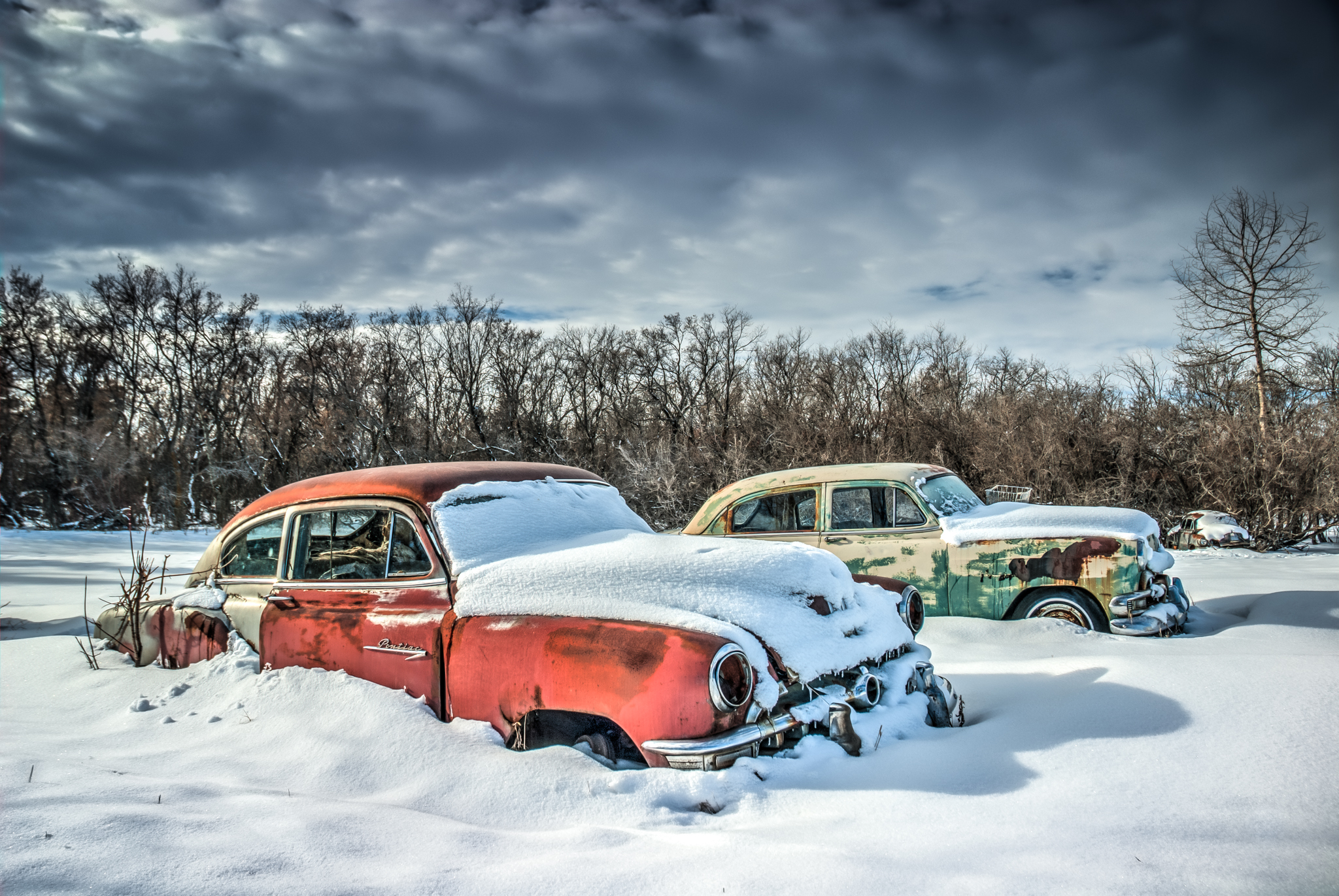 Snow Classics, Biofriendly Image of the Day