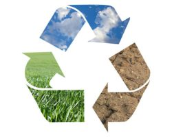 Recycling: It's Not a New Concept, But It's a Vital One