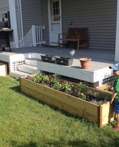 garden beds raised