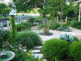 How to Maintain Your Landscape in a Drought
