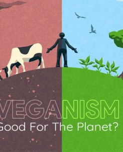 Veganism good for the planet