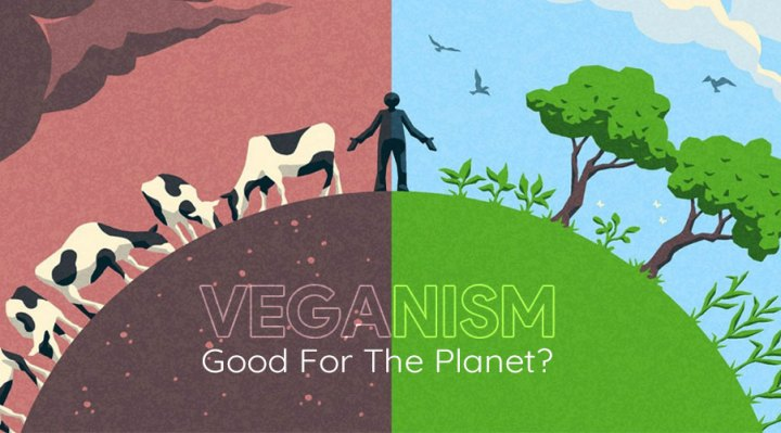Is Veganism truly good for the planet?