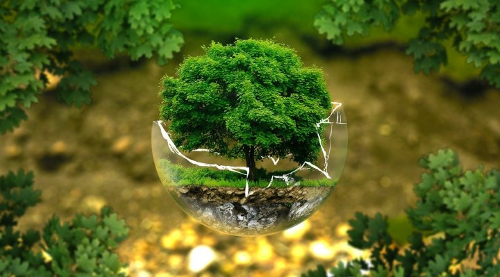 Climate change  Image by ejaugsburg from Pixabay