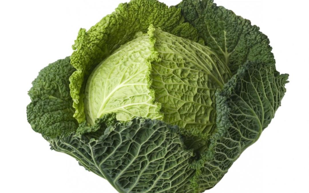 Cancer Prevention: Eat Your Cabbage?