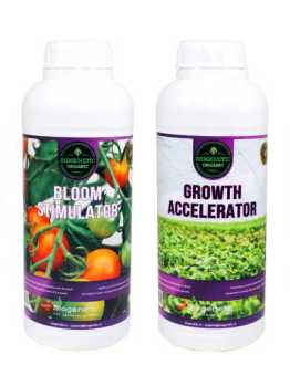 rhizo roots growth saccelerator bloom stimulator flower finsiher groei bloei wortel plantenvoeding kweken top booster wortel groei blad groen opbrengtst eko skall fibl bio biologisch groente telen moestuin zandgrond biogenetic plantenvoeding tekort overschot zwavel npk wiet kweken aptus atami biobizz gout canna
