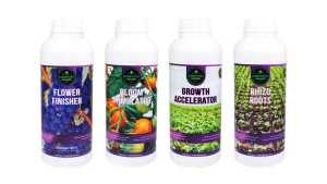 wederverkoper rhizo roots growth saccelerator bloom stimulator flower finsiher groei bloei wortel plantenvoeding kweken top booster wortel groei blad groen opbrengtst eko skall fibl bio biologisch groente telen moestuin zandgrond biogenetic plantenvoeding tekort overschot zwavel npk wiet kweken aptus atami biobizz gout canna