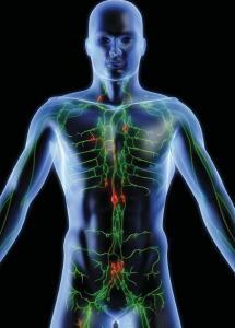 mgz_74_cancer_human-body_size3002