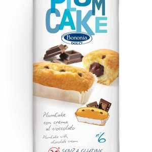 Plumcake al cioccolato bononia senza glutine