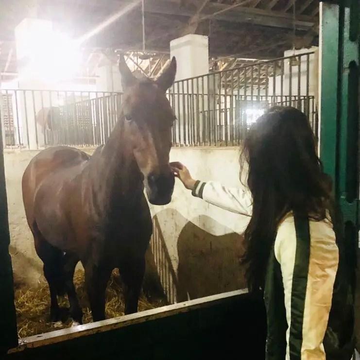 Disha Patani Pets horse