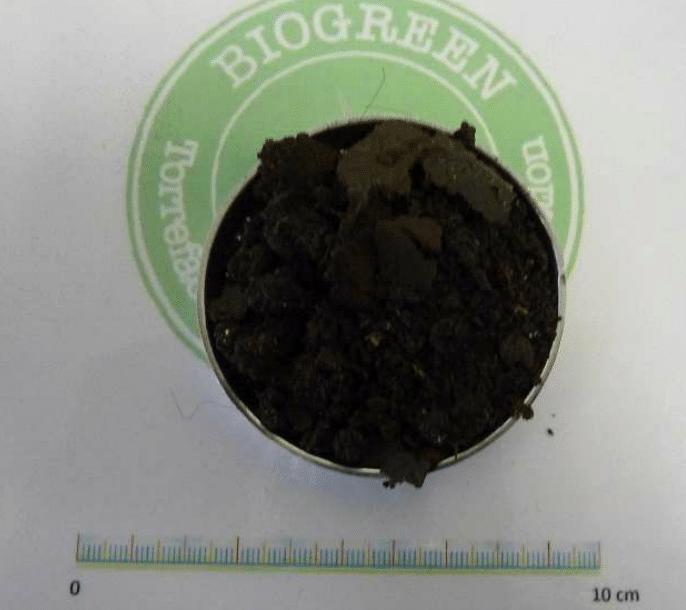 乾燥後下水汚泥 熱分解装置 Biogreen 投入前 2018.2.24
