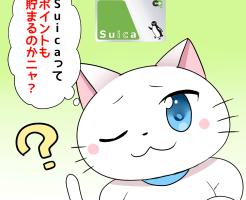 背景にSuicaがあり、白猫が 「Suicaってポイントも貯まるのかニャ?」 と考えているシーン