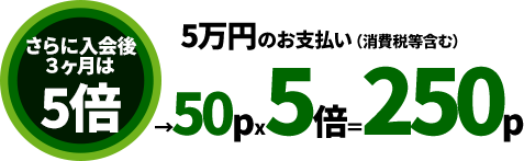 三井住友VISAデビュープラスなら入会から3ヶ月間はポイント還元率5倍