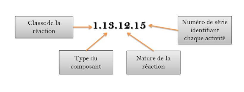 Description des quatre digits d'un EC number.  Image par l'auteur.