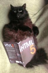 Ze amazing HTML cat (CC-BY Tomomi)
