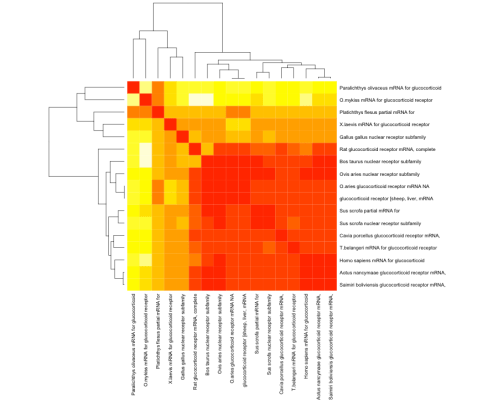 heatmap17mRNA_GR